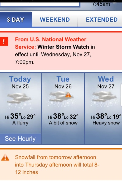 snow forecast in november