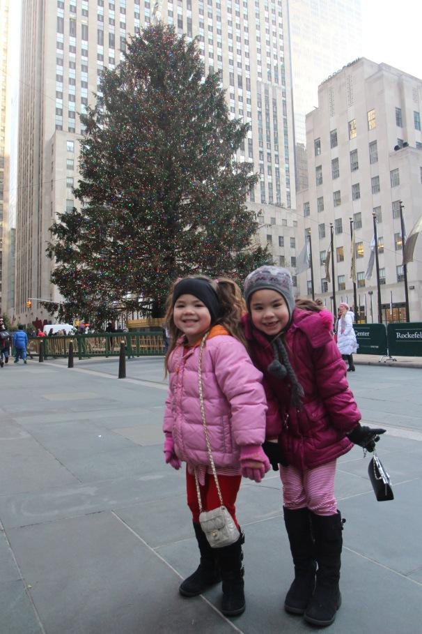 westchester tree