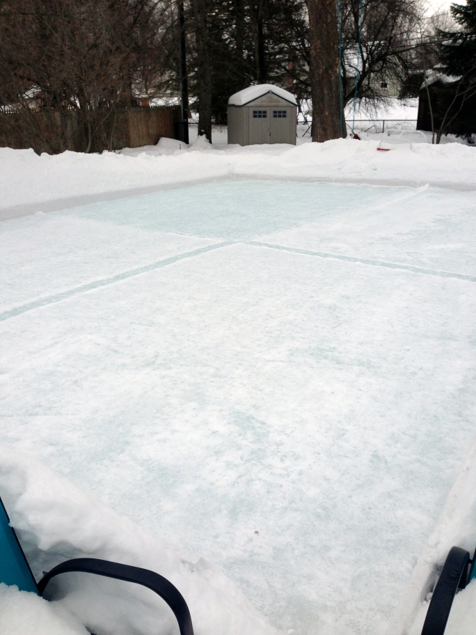 skating rink28