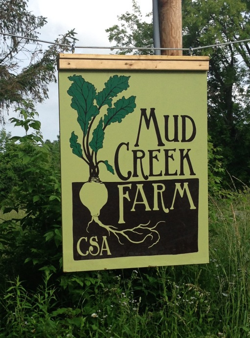mud creek1